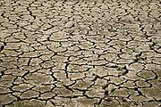 Nederland, Nijmegen, 18-5-2020 Opgedroogde klei. Door de aanhoudende en langdurige droogte dreigt er nu alweer een watertekort voor de landbouw . Foto: Flip Franssen
