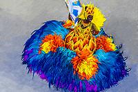 Flag bearer (porta bandeira) in the Carnaval parade of Unidos de Vila Isabel samba school in the Sambadrome, Rio de Janeiro, Brazil.