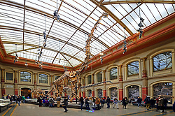 15.03.2016, Museum fuer Naturkunde, Berlin, GER, Naturkundemuseum Berlin, im Bild Blick in die Saurierhalle, Naturkundemuseum // Exhibits in the Natural History Museum Museum fuer Naturkunde in Berlin, Germany on 2016/03/15. EXPA Pictures © 2016, PhotoCredit: EXPA/ Eibner-Pressefoto/ Schulz<br /> <br /> *****ATTENTION - OUT of GER*****