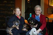 Hope Alswang & Henry Joyce Family