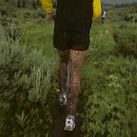 Runners in rainstorm near Jackson, Wyoming.