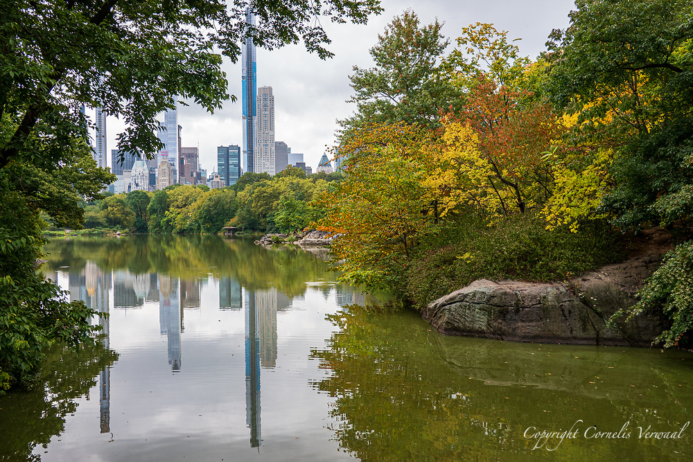 Some early autumn colors at The Lake in Central Park today, Sunday Sept. 27, 2020.