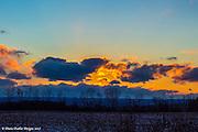 20170303_home_macros_sunset_diane_duthie_