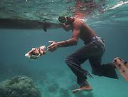 Catching octopus. Fisherman named Tarumpit fishing with duggout canoe off Boheydulang island.