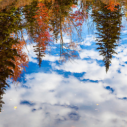 Reflections in Zealand Pond in fall. White Mountain National Forest, New Hampshire.
