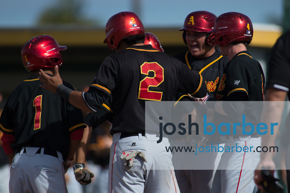 Palm Desert team during the CIF-SS Division 2 Quarterfinal: Palm Desert v Edison at Edison High School on Friday, May 26, 2017 in Huntington Beach, Calif. (Photo by Josh Barber, Contributing Photographer)