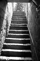 Stairway from the Wine Cellar at Tenuta Lenzini, a Villa and Winery in Tuscany near Lucca, Italy. Image taken with a Leica X2 camera (ISO 400, 24 mm, f/8, 1/80 sec). In camera conversion to B&W. Semester at Sea Spring 2013 Enrichment Voyage.