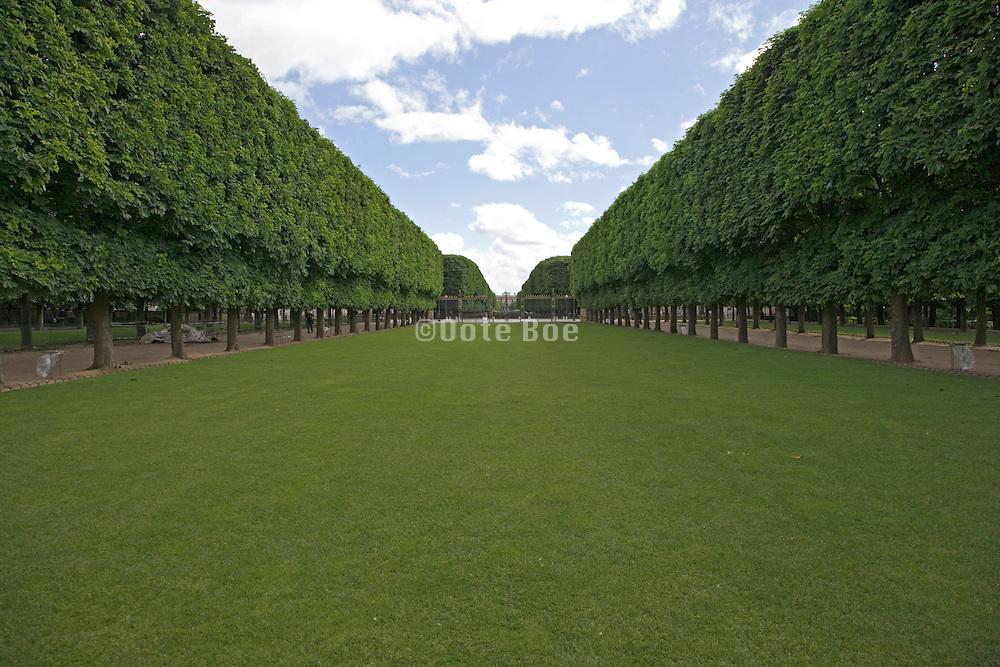 Tree lined lawn in Jardin Du Luxembourg Paris France