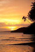 Kapuaiwa Coconut Grove, Molokai, Hawaii