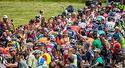 Peloton with fans during the 5th Stage of 27th Tour of Slovenia 2021 cycling race between Ljubljana and Novo mesto (175,3 km), on June 13, 2021 in Ljubljana - Novo mesto, Ljubljana - Novo mesto, Slovenia. Photo by Vid Ponikvar / Sportida