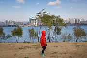 Yeouido Hangang Park aux bords de la riviere Han, Seoul, Coree du Sud. Ces berges aménagées font partie d'un programme de réhabilitation de la faune et de la flore sur une rivière fortement dégradée par le développement urbain.  //  Yeouido Hangang Park on the banks of the Han River, Seoul, South Korea. These landscaped banks are part of a program to restore the flora and fauna to a severely degraded river by urban development.