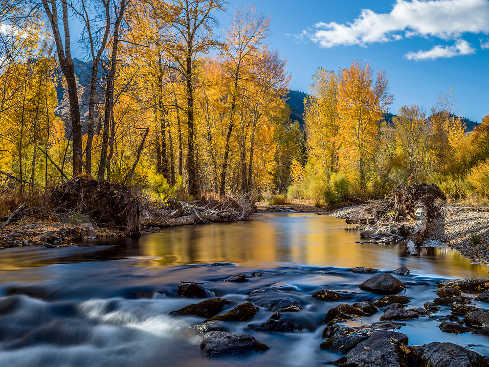 Open Edition Numbered Prints<br /> A breezy afternoon with fall colors illuminating the Wood River north of Ketchum, Idaho with colors reflections coming off the water surface with a slow exposure