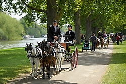 © London News Pictures. 15/05/2016. Windsor, UK. A horse drawn carriage passes along the banks of the River Thames on the final day of the 2016 Royal Windsor Horse Show, held in the grounds of Windsor Castle in Berkshire, England. This years event is part of HRH Queen Elizabeth II's 90th birthday celebrations.  Photo credit: Ben Cawthra/LNP