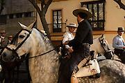 Festival of the Virgin of El Rocio. Every May Equestrians gather beneath the lilac Jacaranda blossoms of Jerez, to escort the Virgin and its procession. Jerez de la Frontera, Andalucia
