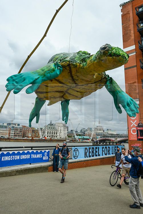"""© Licensed to London News Pictures. 06/09/2020. LONDON, UK.  An activist from Extinction Rebellion (XR)  holding an model sea turtle takes part in a """"Flood Alert"""" protest on the shore of the River Thames near Gabriel's Wharf on the South Bank to highlight the effects of climate change on rising sea levels.  Photo credit: Stephen Chung/LNP"""