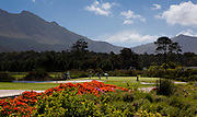 Steenberg golf course documented for Cape Town Tourism. Images by Greg Beadle