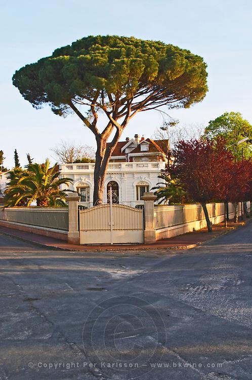villa umbrella pine arcachon bordeaux france