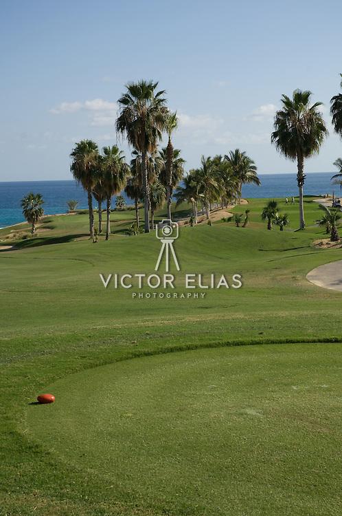Cabo Real Golf course. Cabo San Lucas, BCS.Mexico