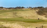 WASSENAAR - green Hole 2.  Haagsche GC. Copyright Koen Suyk.