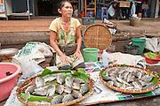 06 APRIL 2010 - NAKHON PHANOM, THAILAND: A fish monger in the market in Nakhon Phanom, Thailand.    PHOTO BY JACK KURTZ