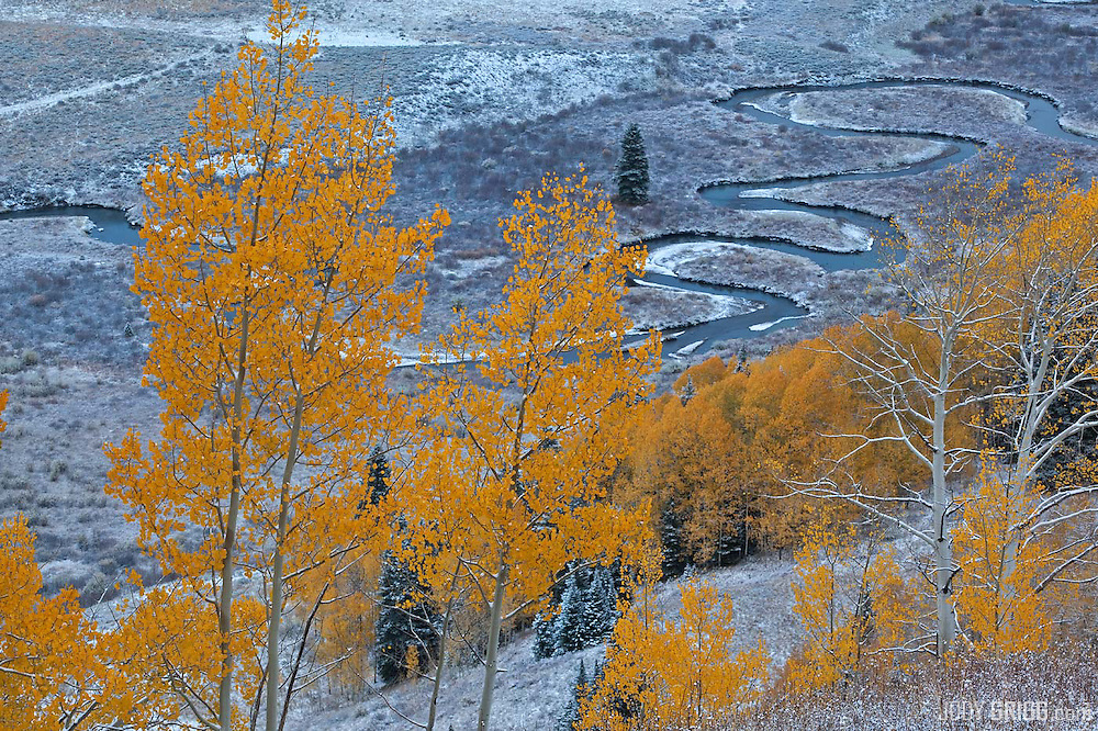 The East River sneaks along a valley floor near Mount Crested Butte.