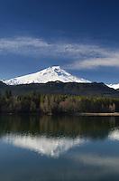 Mount Baker (elevation 10,778feet (3,285m), seen from Baker Lake, North Cascades Washington