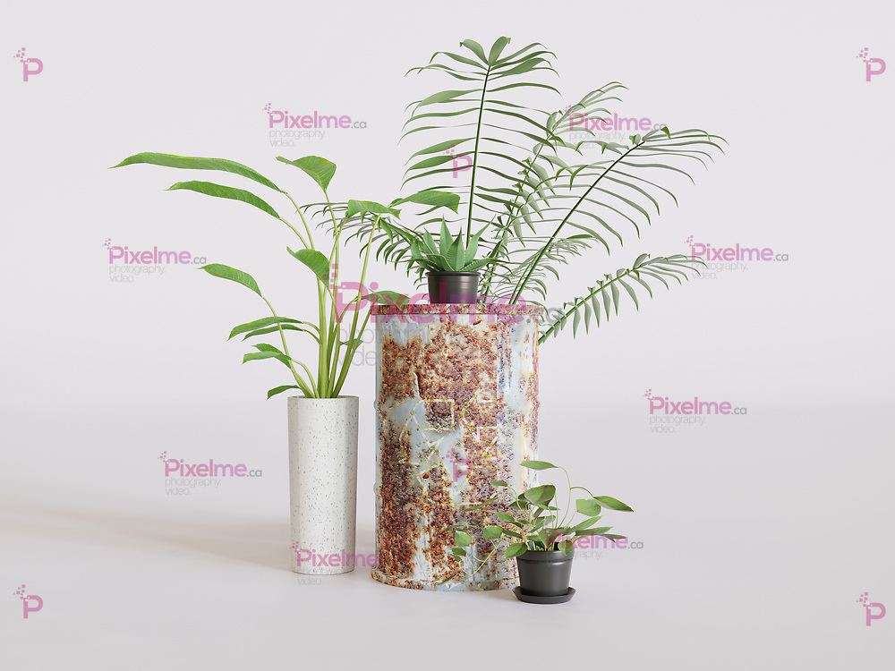 Plants with old rusty metal barrel with recycling sign in studio with a white background - 3d rendering concept