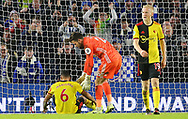 Watford's Adrian Mariappa looks dejected as he is consoled by Watford's goalkeeper Ben Foster after scoring 1-1 during the Premier League match at the American Express Community Stadium, Brighton and Hove. Picture date: 8th February 2020. Picture credit should read: Paul Terry/Sportimage
