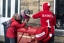 © Licensed to London News Pictures . 17/12/2018. Glossop, UK. A postman wearing a red Santa Claus Christmas sweater and shorts , delivers mail to homes and businesses in Glossop Town Centre . Photo credit: Joel Goodman/LNP