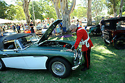 Guildford Heritage Fair 2013 Austin-Healey