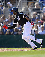 GLENDALE, ARIZONA - FEBRUARY 23:  Eloy Jimenez #74 of the Chicago White Sox bats during the game against the Los Angeles Dodgers on February 23, 2019 at Camelback Ranch in Glendale Arizona.  (Photo by Ron Vesely)  Subject:  Eloy Jimenez