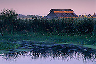 Sunrise light on barn as seen from the Arcata Marsh, Arcata, Humboldt County, CALIFORNIA
