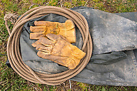 Lasso and gloves for getting the bison into the tranport venicle. Transportation of European Bison, or Wisent, from the Avesta Visentpark, in Avesta, Sweden. The animals were then transported to the Armenis area in the Southern Carpathians, Romania. All arranged by Rewilding Europe and WWF Romania, with financial support from The Dutch Postcode Lottery, the  Swedish Postcode Foundation and the Liberty Wildlife Fund.