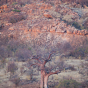 Overlook at sunset. Mapungubwe National Park and World Heritage Site, Leokwe Camp, South Africa, September 2009, Organization for Tropical Studies Trip.