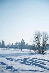 Winter landscape of snow-covered fields, Bavaria, Germany