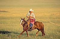 Mongolie. Province du Khentii. Rassemblement des troupeaux de chevaux. // Rallying of horses drove. Khentii province. Mongolia.