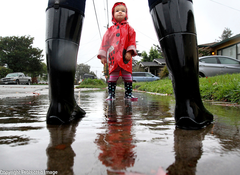 At less than two years of age, it's no wonder that Claire Conger seems perplexed as she looks up at her aunt Kristen Calhoun as they stand in a rain puddle - an item rarely in evidence here in Santa Cruz County during her lifetime, as the pair ventures out for a walk along King Street in Santa Cruz, California.<br /> Photo by Shmuel Thaler <br /> shmuel_thaler@yahoo.com www.shmuelthaler.com