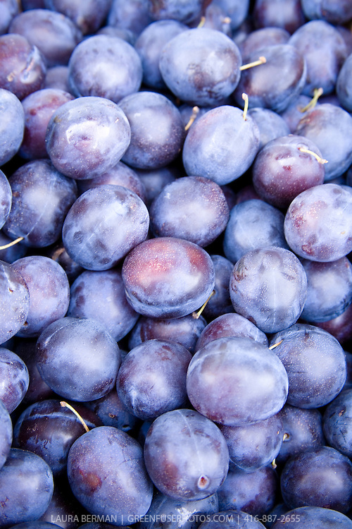 Ripe plums at a farmers market