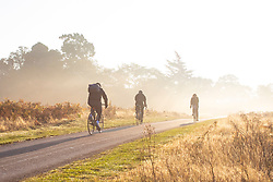 © Licensed to London News Pictures. 10/10/2018. London, UK. Cyclists pass through Bushy Park, south London, at sunrise. Forecasters are expecting unusually warm temperatures for October. Photo credit: Rob Pinney/LNP