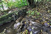 Nederland, Ubbergen, 19-10-2016 Rondom en op de Duivelsberg. Beekje in het filosofendal .  De Duivelsberg is een heuvel en natuurreservaat in de gemeenten Ubbergen en Groesbeek in de Nederlandse provincie Gelderland. De 75,9 meter hoge heuvel, in Duits Teufelsberg of Wylerberg , ligt op de stuwwal ten oosten van Nijmegen, tussen Berg en Dal, Beek en de Nederlands-Duitse grens. Het natuurgebied is voornamelijk begroeid met loofbomen. De berg behoorde aanvankelijk toe aan het dorp Wyler in de Duitse gemeente Kranenburg. Na de Tweede Wereldoorlog behoorde de Duivelsberg en omgeving tot de gebieden die Nederland op 23 april 1949 ten koste van Duitsland annexeerde. Foto: Flip Franssen