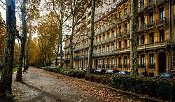Autumn street scene in Allées Forain-François Verdier, Toulouse, France<br /> <br /> (c) Andrew Wilson | Edinburgh Elite media