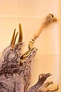Specimen in the natural history museum in Vienna Austria, The Naturhistorisches Museum Wien