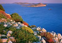 Kornati National Park, Mana Island, view south