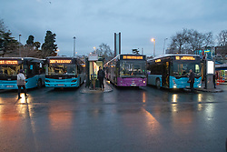 Buses At Ferry Terminal