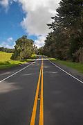 Waikii, Slopes of Mauna Kea, Island of Hawaii
