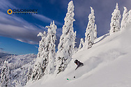 First Tracks on Evans Heaven on sunny powder morning at Whitefish Mountain Resort, Montana, USA model released