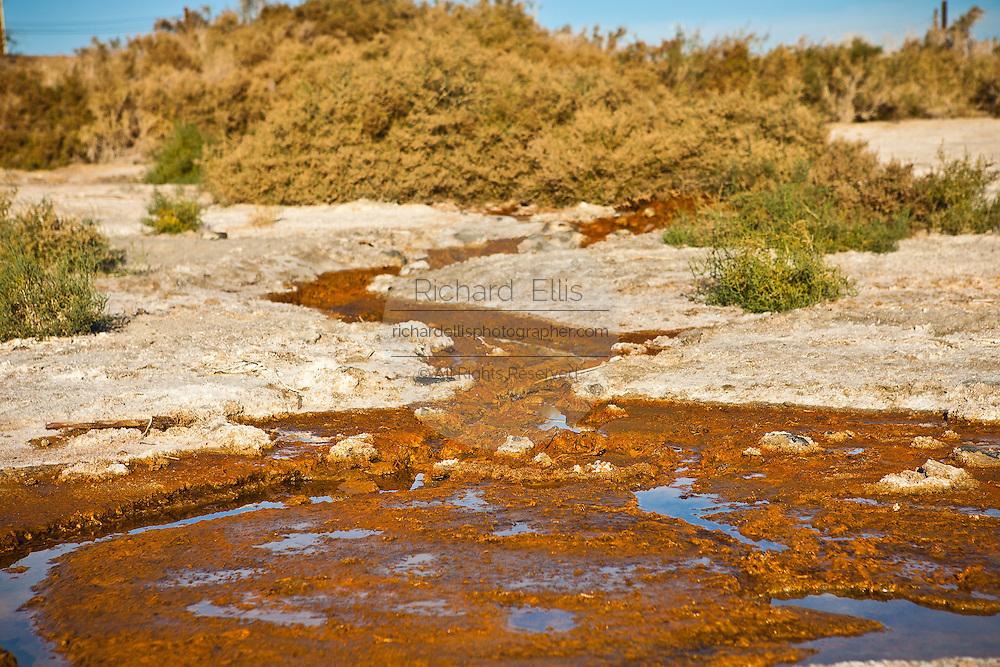 Toxic run off drains into the Salton Sea  Imperial Valley, CA.
