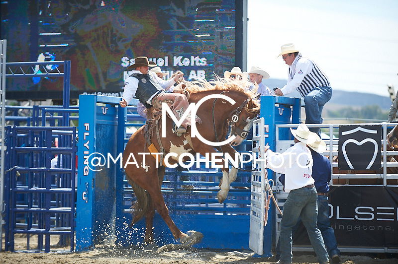 Saddle bronc rider Sam Kelts of Millarville, AB rides -Q10 Bear Naked at the Rancho Mission Viejo Rodeo in San Juan Capistrano, CA.  <br /> <br /> <br /> UNEDITED LOW-RES PREVIEW<br /> <br /> <br /> File shown may be an unedited low resolution version used as a proof only. All prints are 100% guaranteed for quality. Sizes 8x10+ come with a version for personal social media. I am currently not selling downloads for commercial/brand use.