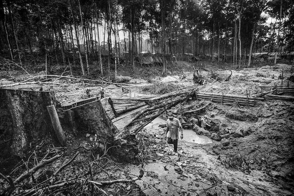 Brazil, Amazonas, Eldorado do Juma.<br /> <br /> Grota velha, garimpeiros.<br /> Eldorado do Juma est maintenant un bidonville de plastique noir et de misere croissante sur la rive du fleuve, qui attire les prospecteurs. Des centaines d'hommes y creusent la boue sur leurs petites parcelles delimitees par des branchages et des ficelles. A la fin du jour, les plus chanceux auront trouve quelques poussieres d'or, vendues ensuite 40 reals le gramme (14,5 euros) a Apui, 65km au nord. Les plus riches du coin sont ceux et celles qui cuisinent, nettoient ou divertissent les mineurs.<br /> Il y a trop de prospecteurs pour la teneur du filon, du coup les garimpeiros s'eparpillent sur une surface qui couvre plus de 40 hectares. Tous les mineurs dependent de l'autorisation d'une cooperative de proprietaires pour travailler. Ces proprietaires ne possedent pourtant pas de titre foncier pour justifier leur etat, ils sont simplement arriver les premiers sur les parcelles : c'est la loi de l'or.<br /> Quatre mois apres le debut de cette ruee, la plupart du minerai qui peut etre extrait manuellement a ete trouve, les mineurs qui restent sont les survivants de la rumeur. Ils n'ont souvent plus rien et esperent seulement trouver de quoi payer le voyage pour aller tenter leur chance vers d'autres terres promises.