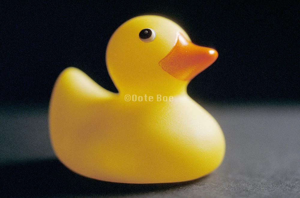 still life of a rubber ducky
